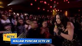 Video Dewi Perssik - Bang Bang Tut   Malam Puncak SCTV 28 MP3, 3GP, MP4, WEBM, AVI, FLV September 2018