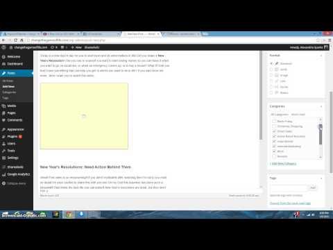 Adding Keywords to Blog Example Shows WordPress