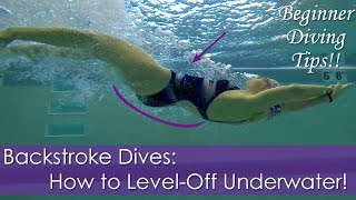 Beginner Learning The Backstroke Dive: How to Level-off Underwater!