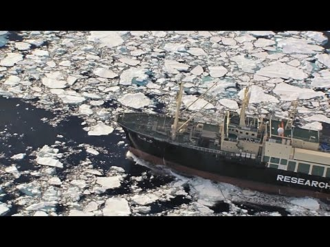 The Yushin Maru No 1 and Nisshin Maru  are spotted then flee through ice fields