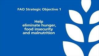 FAO Strategic Objective 1