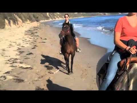 Bates Beach Horseback Ride.m4v