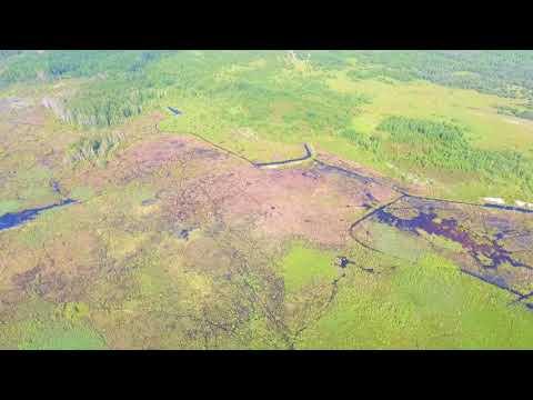 Рятувальники Рівненщини моніторять стан природних екосистем [ВІДЕО]