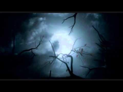 Indila - Boite en argent lyrics
