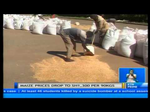Farmers call for increase in supplementary budget allocation to National Cereals and Produce Board