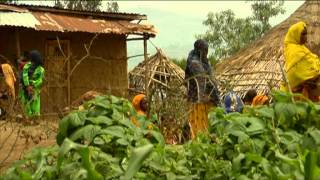 Responding To Severe Acute Malnutrition In Ethiopia