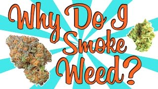 WHY DO I SMOKE WEED? by Strain Central