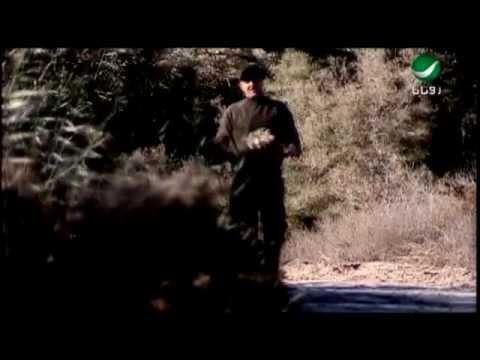 خالد الشيخ - المحبة طيور