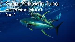 http://coatesmans.com/ Spearfishing Giant Yellowfin Tuna on Ascension Island with Chris Coates & Mohammed Al Kuwari (MJK) Enjoy some of the craziest ...