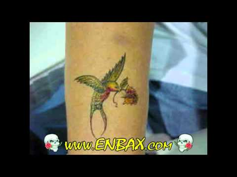 Tattoos Images Colorful Birds