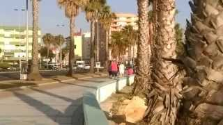 La Linea de la Concepcion Spain  city photo : La Linea de la Concepcion, Spain, near Gibraltar