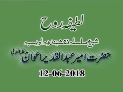 Watch Sohbat-e-Sheikh (Latifa Rooh) YouTube Video