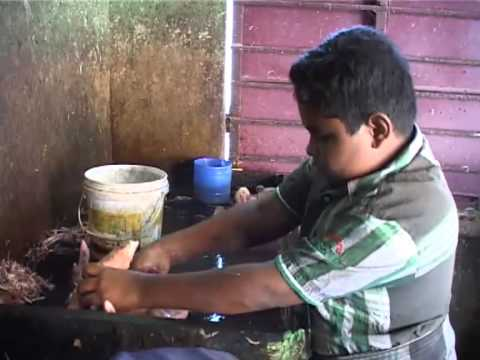 Kadarkarai thagam  Flim about child labour short film