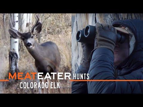 Colorado Elk w/ MeatEater Producer Janis Putelis | S1E02 | MeatEater Hunts