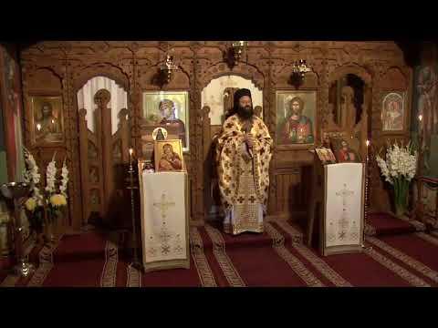 2020.06.29 DIRECT Sfânta Liturghie - Divine Liturgie, LIMOURS