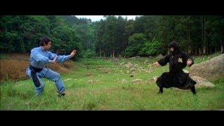 Nonton V   T  U      U V   I Ninja Nh   T B   N   Kungfu Vs Ninjutsu   Film Subtitle Indonesia Streaming Movie Download