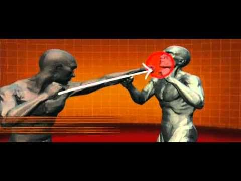 kickboxing - History Channel : Human Weapon.