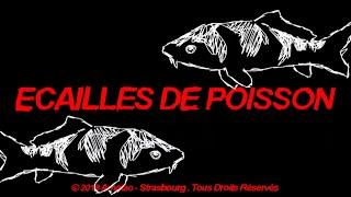 Alkpote - Écailles De Poisson [VideoClip]