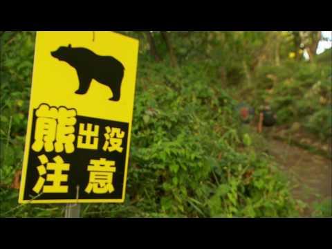 Historic Walks - Nagiso, Japan