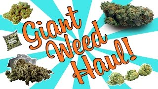GIANT WEED HAUL!! by Strain Central