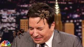 Jeff Musial Creeps Jimmy Out with Mexican Tarantulas - YouTube