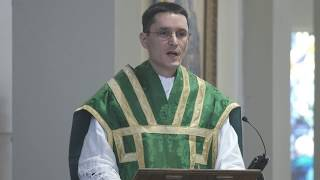 Video The Parable of the Cockle & Perseverance, by Fr. Fliess MP3, 3GP, MP4, WEBM, AVI, FLV November 2018