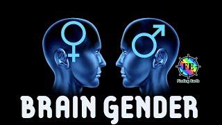 Nonton Male Brain VS Female Brain Film Subtitle Indonesia Streaming Movie Download