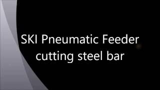 SKI Pneumatic Feeder