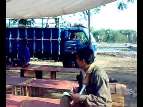 Prawn Seed Supply Aurangabad 2010-1.mp4