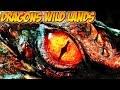 Dragons Wild Lands Joguei O Jogo De Um Inscrito