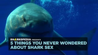 SharkWeek  Starts Sun Jul 23 Take a deep dive into the weird and violent world of shark reproduction. Full Episodes Streaming FREE on Discovery GO: ...