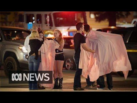 California bar gunman who killed 12 people identified as former US Marine   ABC News