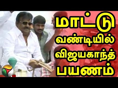 THANTHI TV's Exclusive Report