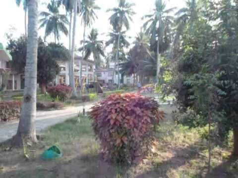 ap tourism dindi resorts view
