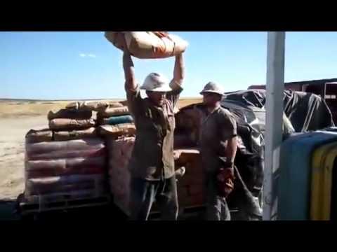 Cement Head Prank Hilarious || WOF