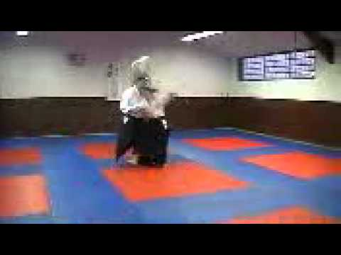 Aikido Barcares Rene et Pierre-Michel COULY
