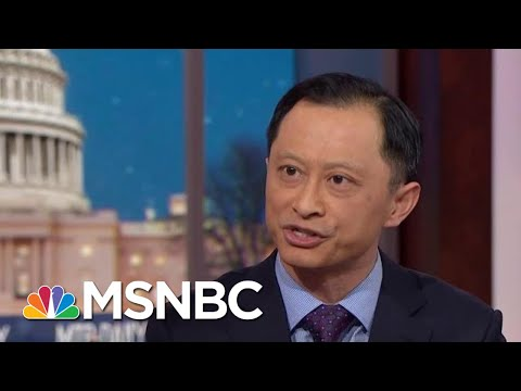 Donald Trump National Emergency Could Be Stuck In Court 'Many, Many Months' | MTP Daily | MSNBC