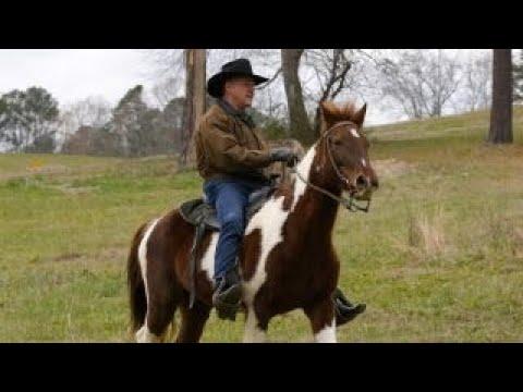 Roy Moore arrives on horseback to cast vote