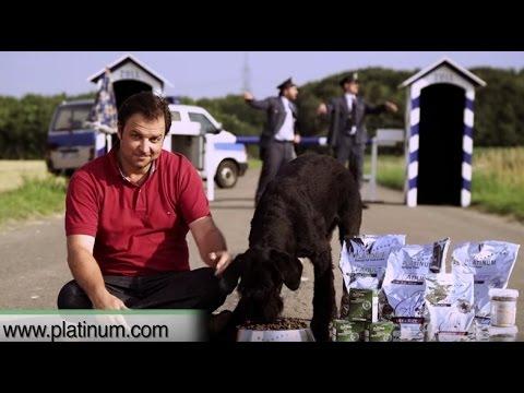 Martin Rütter & PLATINUM bei einer Zollkontrolle