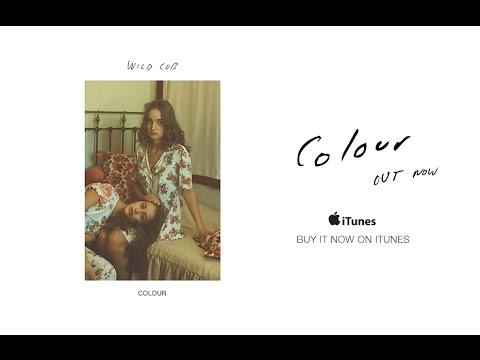 Wild Cub - Colour