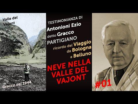 Testimonianza di Ezio Antonioni