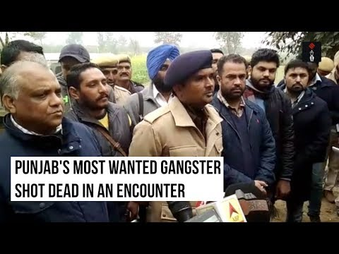 Video Vicky Gounder, Punjab's Most Wanted Gangster, Shot Dead In Encounter With Police download in MP3, 3GP, MP4, WEBM, AVI, FLV January 2017