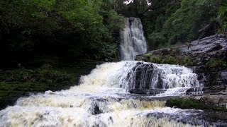 The Catlins New Zealand  city images : McLean Falls - The Catlins New Zealand