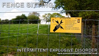 Fence Sitting thumb image