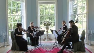 Video Perfect (Ed Sheeran) Wedding String Quartet download in MP3, 3GP, MP4, WEBM, AVI, FLV January 2017