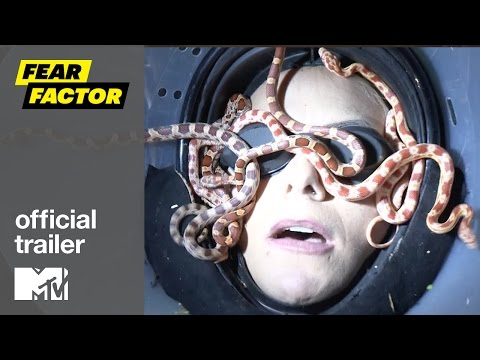 Fear Factor Season 8 Teaser