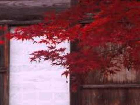 シバの女王(サバの女王) 尺八:櫻井正隆 Shakuhachi:Masa... NEXT VID