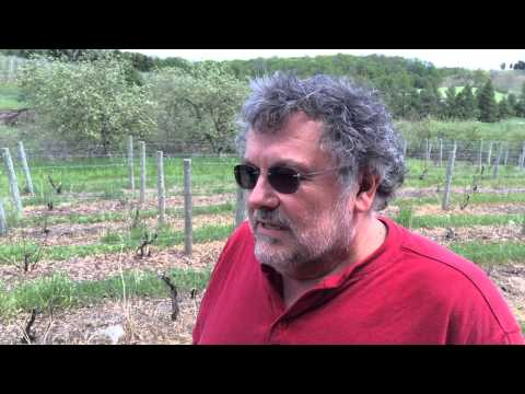 L. Mawby in MLive's search for Michigan's Best winery