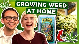 How To Grow Weed at Home: First Week with 3x Strains by That High Couple