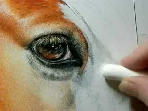 Painting Demonstration Video – Painting of a Horse Close up